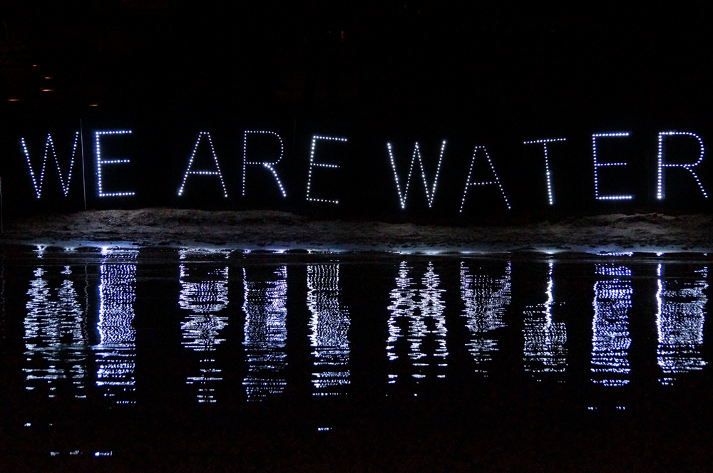 Privatized water all about the profit overpass light for We are water