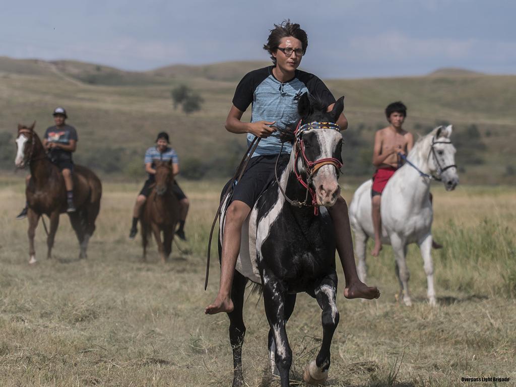 horse-boys